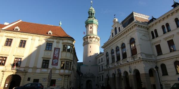 A Tűztorony Sopron egyik jelképe – a Hűség kapuján átgurulva indulunk a Fertő tó irányába