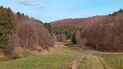Blick hinunter ins Laßbachtal