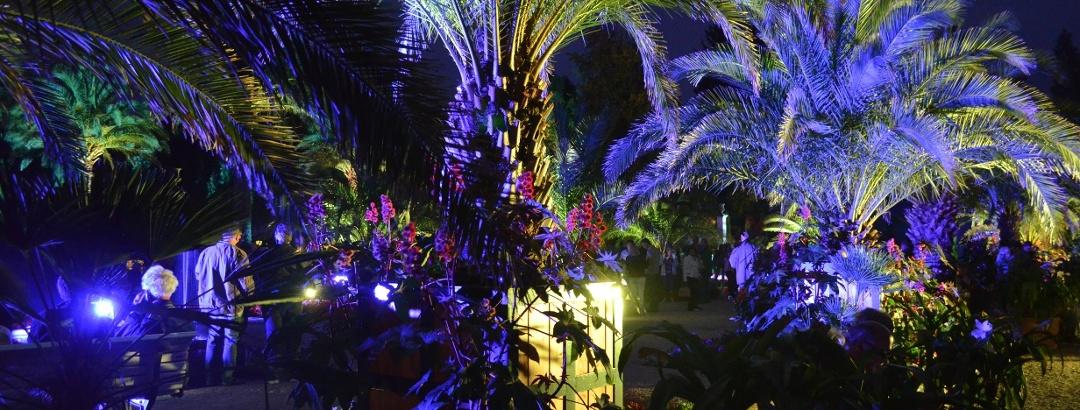 Beleuchtung Kurpark