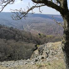 Kilátás a Vadálló-kövekről a Rám-szakadék felé