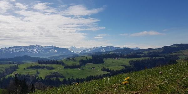 Aussicht Richtung Berner Alpen