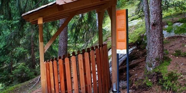 Erlebnisreiche Wanderung zu den Urlärchen und Gletschermühlen bei Platt im Passeiertal.