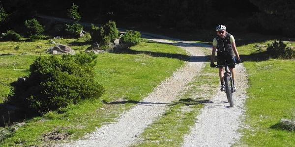 Easy tour along alpine roads.