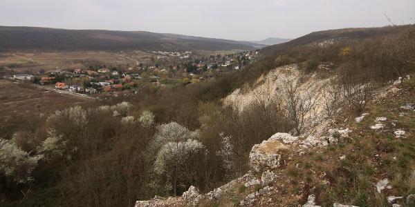 Kilátás Remeteszőlősre a Hosszú-Erdő-hegyről