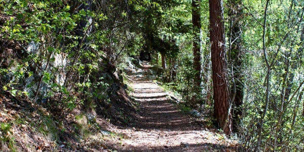 Einfache Wanderung auf dem schattigen Raststeinweg ober Schenna.