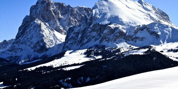 Die Loipe führt von Saltria unterhalb des Plattkofels zum Tirler auf der Seiser Alm.