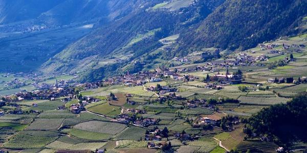 Von Dorf Tirol nach Kuens, gemütliches Wandern im Burggrafenamt.