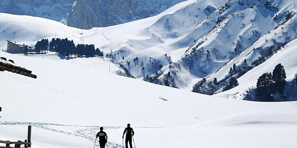 Cross the alpine meadows and hike slightly downwards to Laurin Hut.