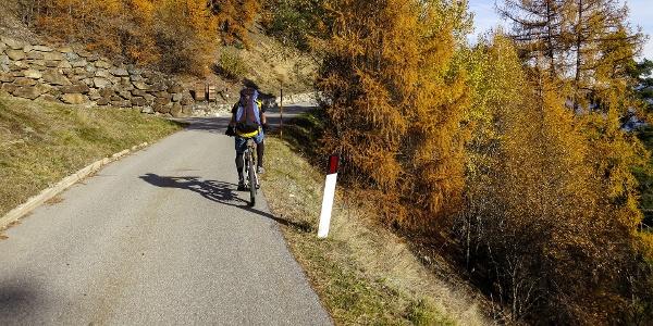 Von Oberluttach führt die MTB-Tour auf Asphalt hinauf zum Kleinstaller.