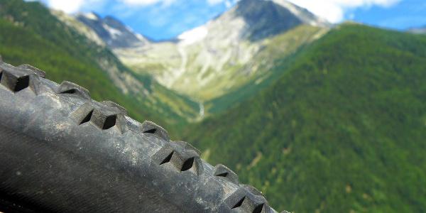 Panoramatour mit gigantischem Gipfelblick auf die Zillertaler Alpen.