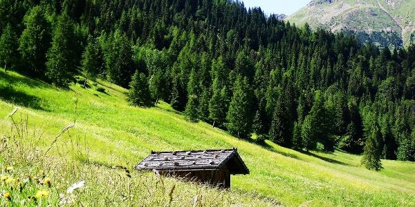 Die Rundwanderung zum Monte Pin führt an zahlreichen Almhütten vorbai.