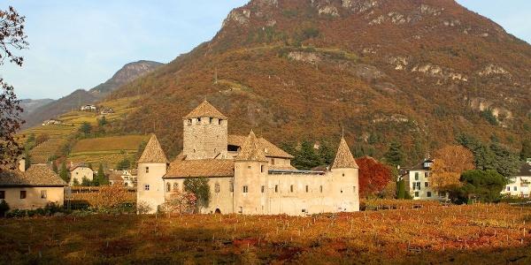 Schloss Maretsch, umgeben von Weinreben, mitten in der Stadt Bozen