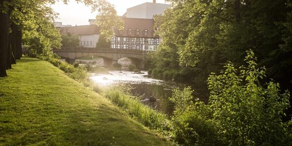 Brigach in Donaueschingen
