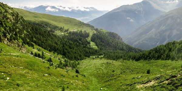 """Auf dem """"Stilfser Höhenweg"""" zunächst über Wiesenhänge hinauf zum Goldsee."""