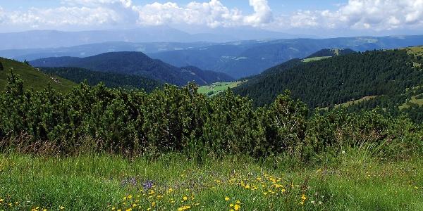 Panoramablick vom Weg zum Rittner Horn aus