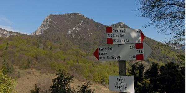 Dem Passo Guil wendet der Monte Carone seine bewaldete Ostflanke zu