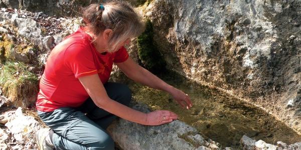 Wasser war sehr kostbar auf der Höhenterrasse von Anglone: aus dem Fels geschlagener Brunnen