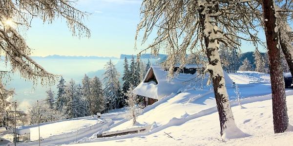 Zauberhafte Winterlandschaft am Vigiljoch.