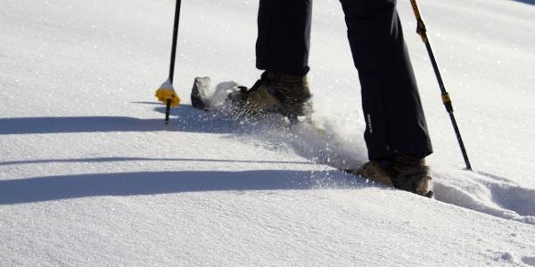 Mit den Schneeschuhen von der Schwemmalm über Breiteben hinunter nach Steinrast.