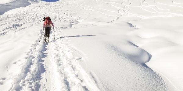 Leichte Skitour inmitten imposanter Berggipfel - vom Martelltal auf die Eisseespitze.