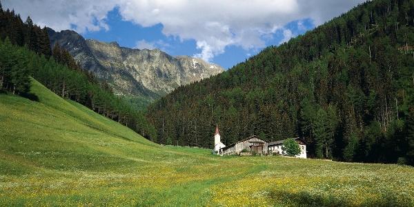 From the maso Wannser farm in a short time you reach the malga di Vannes alpine pasture.