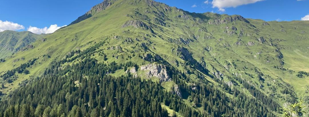 Kobler Alpe