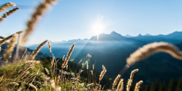 Berge Adelboden