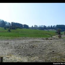 Duppacher Maar beim Duppacher Drees im Tal des Dreisbaches