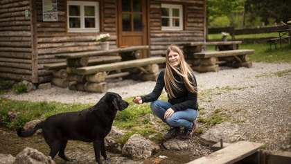 Wandern mit Hund an der Hiebammen Hütte