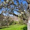 Blies-Grenz-Weg im Frühling