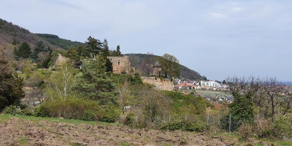Haardter Schloss - Burg Winzingen