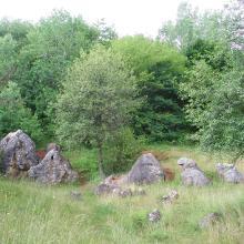 Medve-sziklák