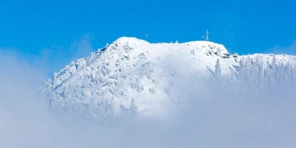 Über den Wolken - der Gipfel des Wallbergs vom Setzberg gesehen
