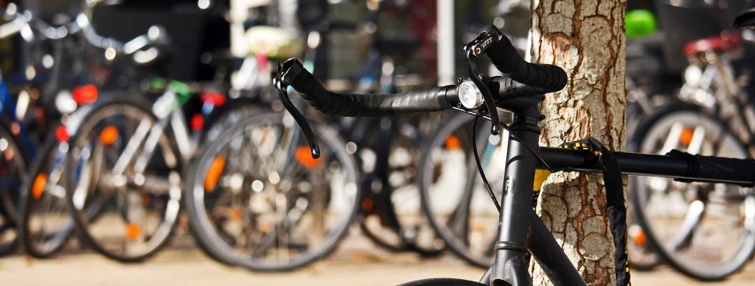 Radfahren in Sachsen-Anhalt
