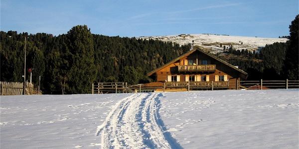 Villanders Alps Winter