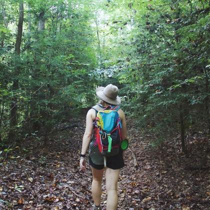 Waldwanderungen im Odenwald