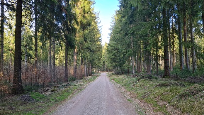 Wanderweg Grünheide barrierefrei