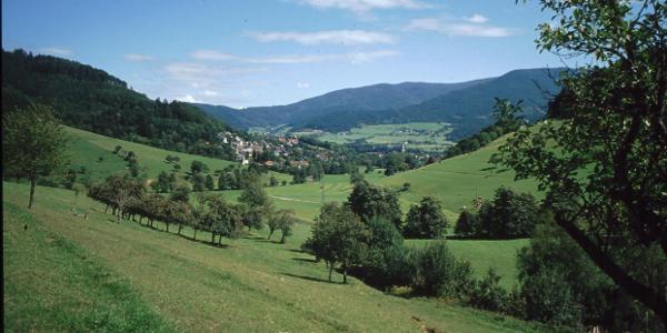 Kohlenbach > Kollnau
