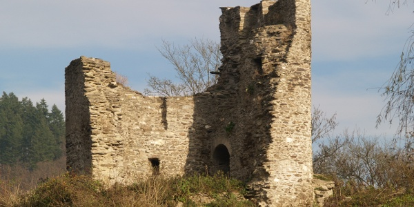 Ruine der Lauksburg im Wispertal