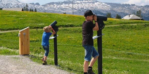 Grosser Moorrundweg auf der Rossweid in Sörenberg