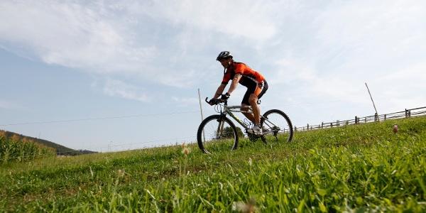 Rad fahren in Nagold