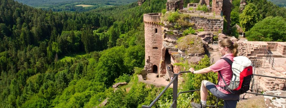 Burgruine Alt-Dahn