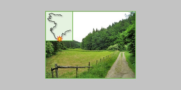 Im Tal des Kuttenbachs