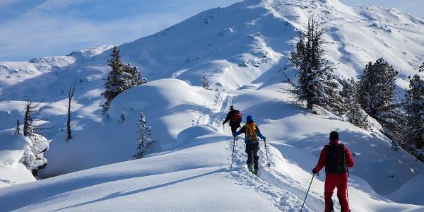 Gilfert von Hausstatt • Skitour » alpenvereinaktiv com