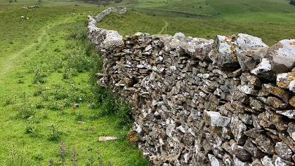 One of the many drystone walls