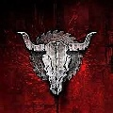 Profilbild von Black Fox