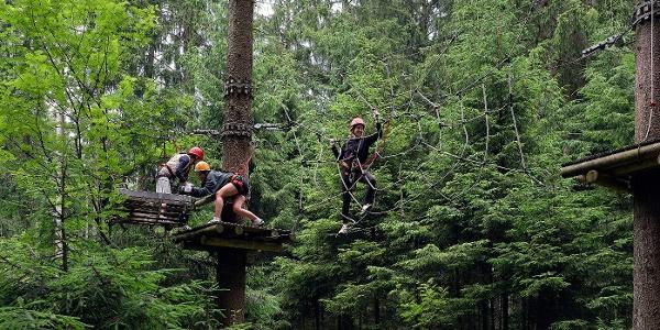 TreeRock - Klettern im Solling