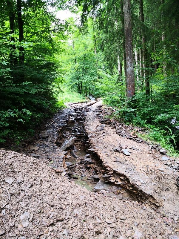 Weggespülter Waldweg im Sauerland