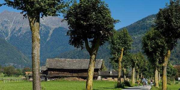 La ciclabile della Val Rendena