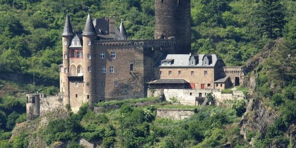 Die Burg Katz